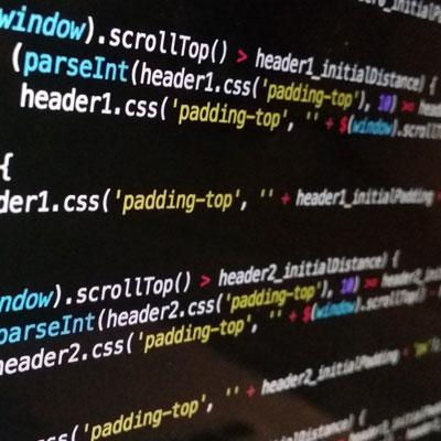 Programmierer & Entwickler